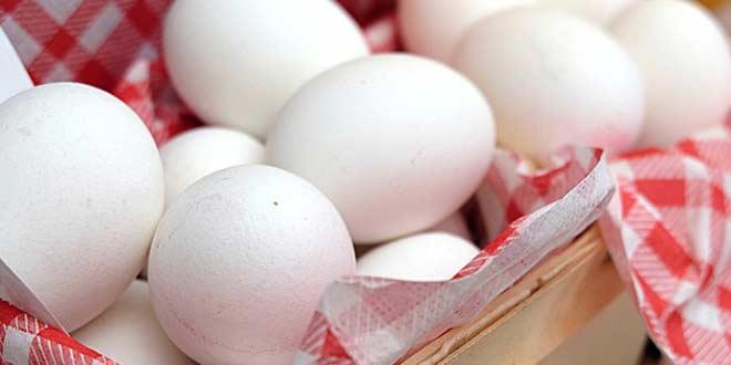 Alimentos ricos en proteína para la masa muscular