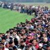 ¿Conoces el impacto médico y económico de la inmigración?